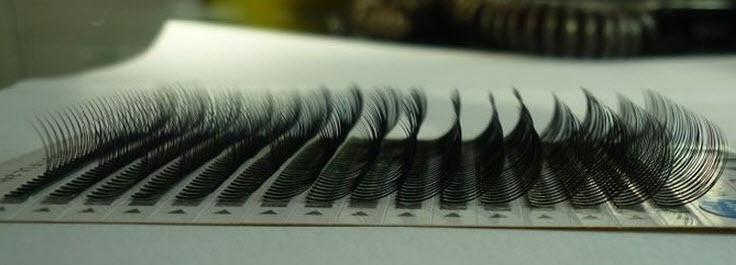 C Curl Lashes